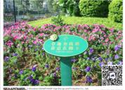 福建大型别墅群「宝珊花园纯水苑」标识系统设计精彩展示!