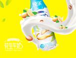 睿目品牌—花生奶包装设计
