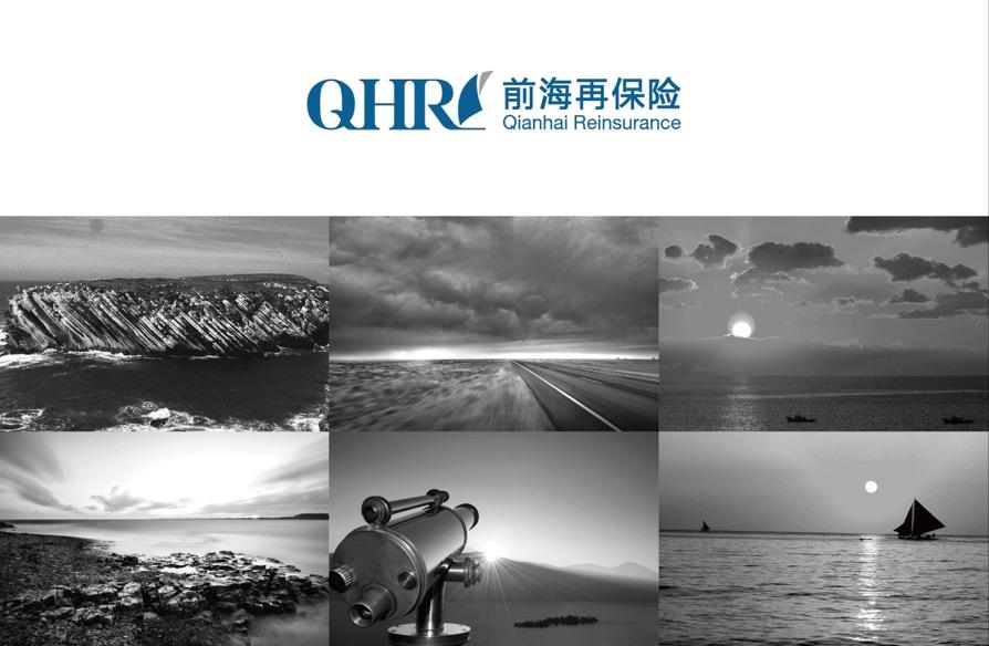 深圳市前海再保险 品牌视觉识别形象设计