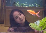 春风集 | 鱼和少女2