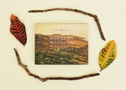 BOSQUES MGICOS自然摄影书籍设计