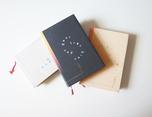 Alexandre Jardin - Cover 品牌书籍装帧