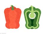 各有姿态的蔬果插图设计