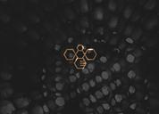 姿蜂堂|食品|蜂蜜|标志设计|LOGO|品牌