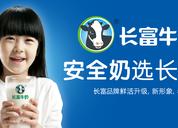 多次打磨的长富牛奶品牌标志