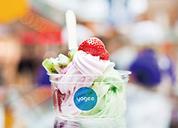 Yogee yogurt |优己