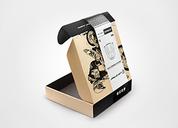 LION ARMOUR品牌设计