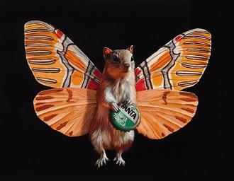 丽莎埃里克森的超现实主义插画:蝴蝶老鼠系列