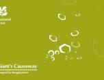 National Trust – Giants Causeway
