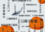 诗词海报设计