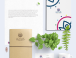 Lotus Wellness Center -Brand Identity 健康品牌视觉形象设计