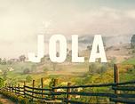 混合蜂蜜品牌JOLA品牌形象设计