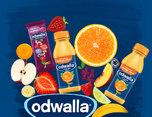 ODWALLA  健康饮品品牌视觉形象设计