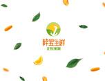 梓昱生鲜(水果、蔬菜类)