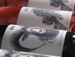 Gama Musso 酒类包装设计