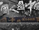 【自然造物】龍行四海白魚入舟