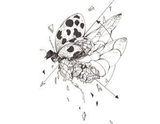 几何体结合动物植物的插画