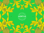 Hortus Botanic Guardians 品牌形象设计