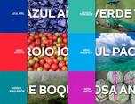 萨尔瓦多共和国全新品牌形象