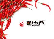 《朝天门火锅》品牌推广