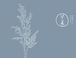 【早禾】品牌logo设计理念