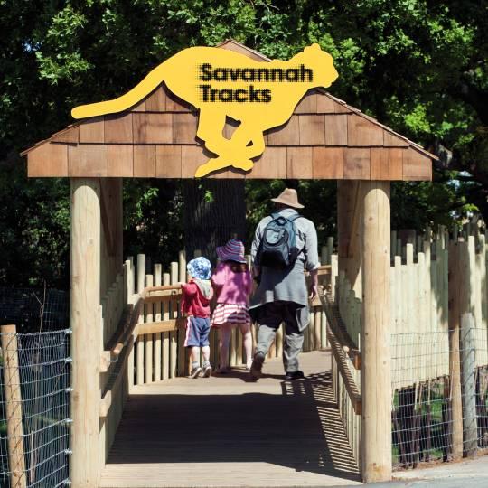savannah tracks野生动物园导视设计