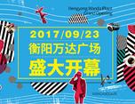 言行品牌作品丨《衡阳万达广场》提案飞机稿