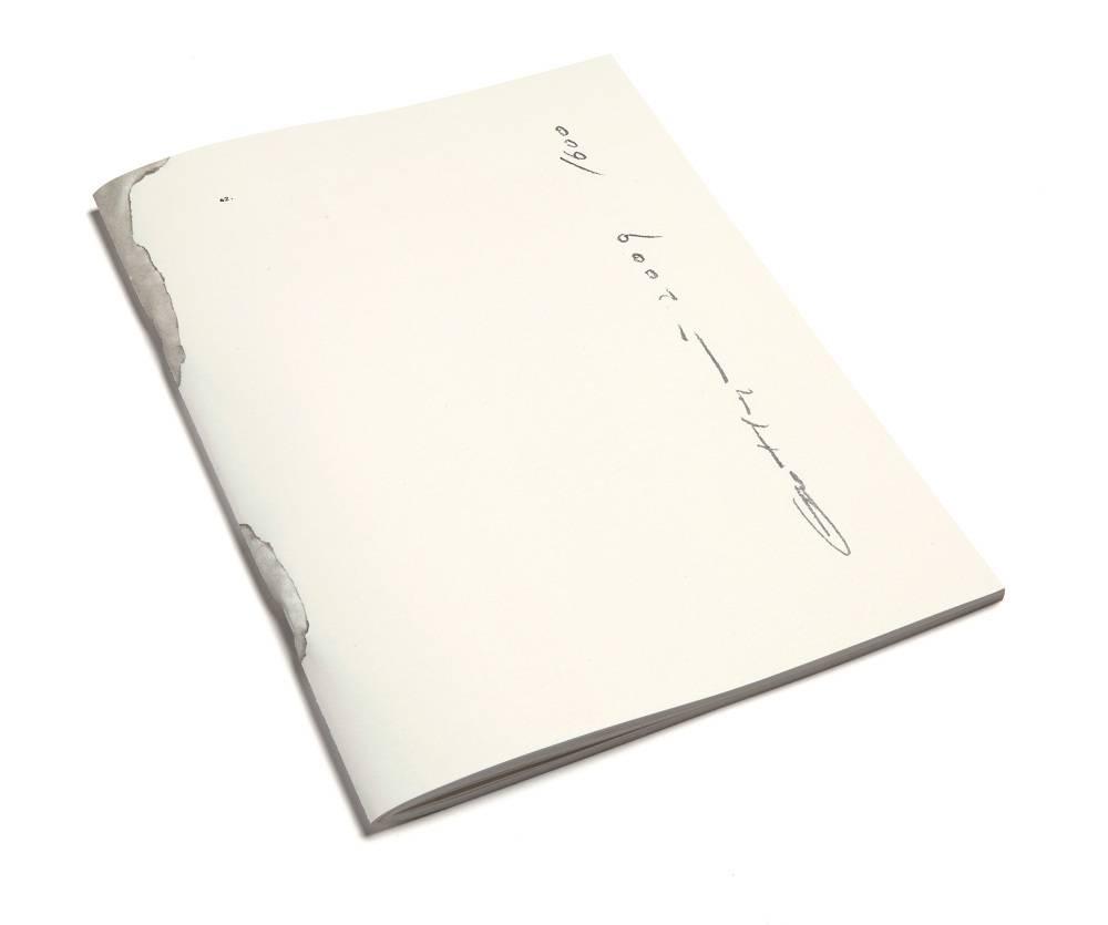 广煜之书籍设计aape标志设计说明图片